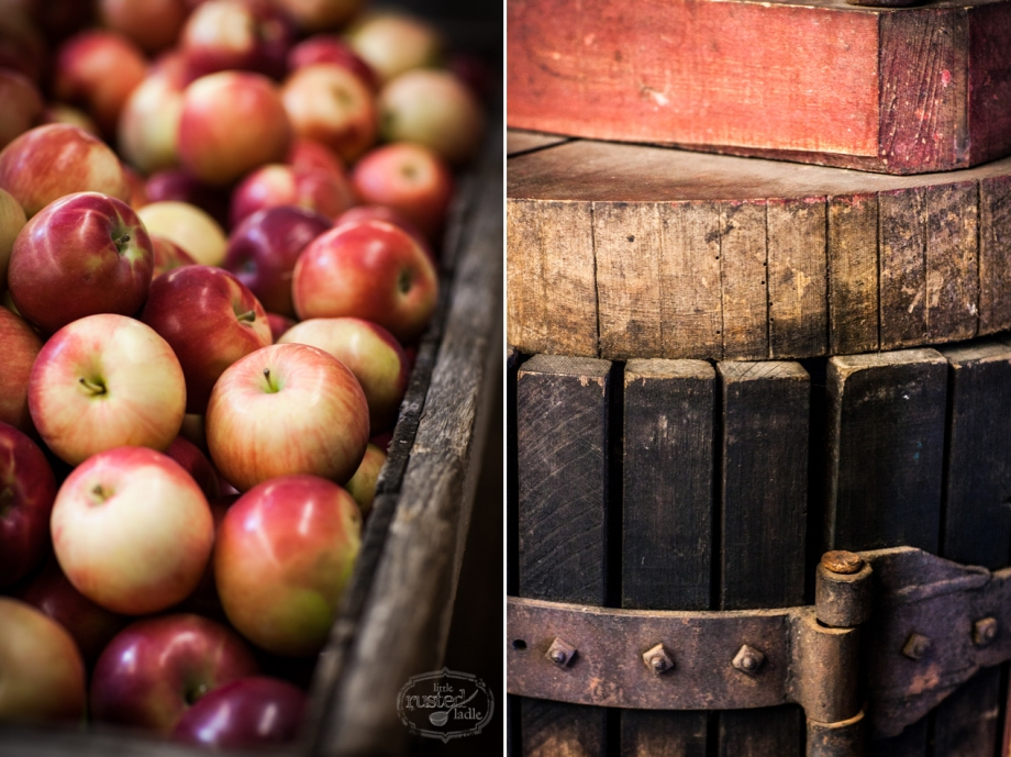 Apple Cider Pork Chop Recipes_Food Photographer_Little Rusted Ladle_Jena Carlin Photography_Rude on Food_3 96WM