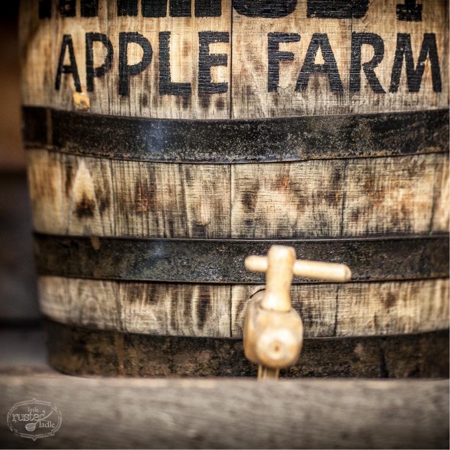 Apple Cider Pork Chop Recipes_Food Photographer_Little Rusted Ladle_Jena Carlin Photography_Rude on Food_4 96WM