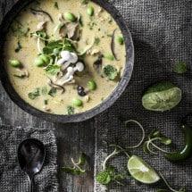 Coconut Curry Chicken Soup Recipe | www.littlerustedladle.com