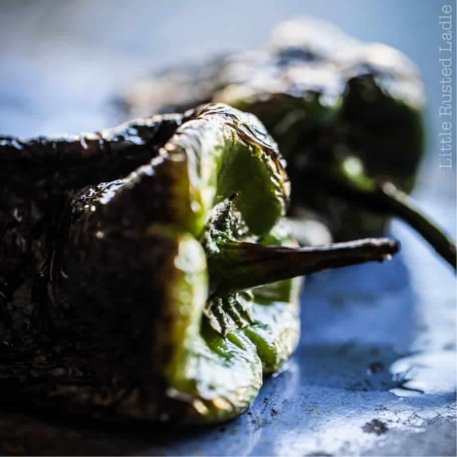Close up of a roasted poblano pepper with moody lighting