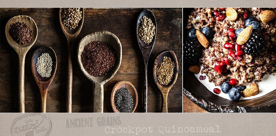 Ancient Grains_Quinoa Crockpot Oatmeal Quinoameal Recipe_FB