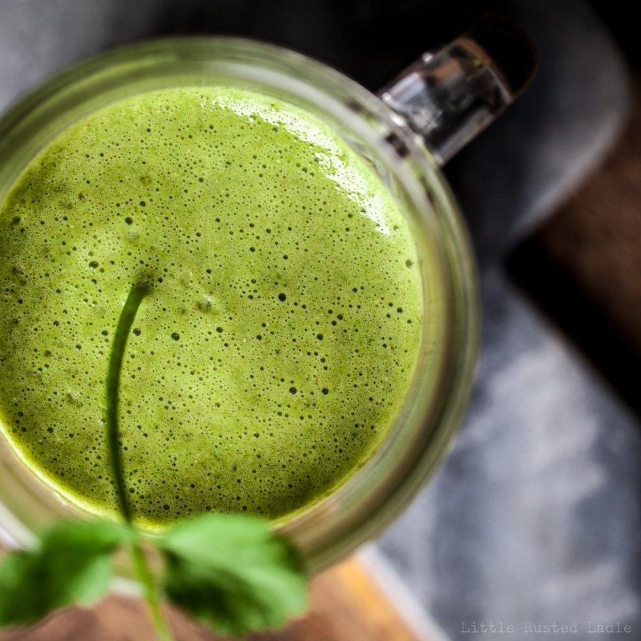 Heavy Metal Detox Green Smoothie - Little Rusted Ladle - Jena Carlin Photography - 031-web WM