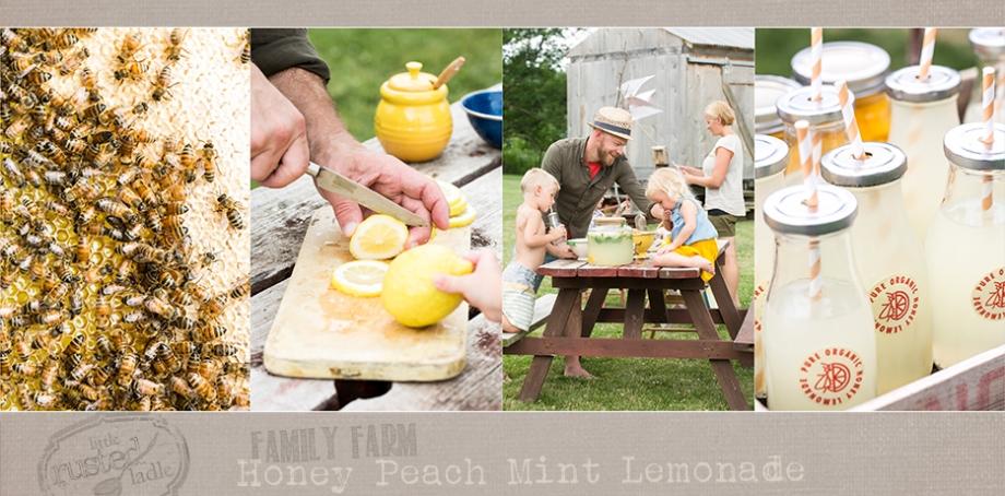 Lifestyle-Bee-Farm-Honey-Mint-Peach-Lemonade-Recipe-Kids-Lemonade-Stand-Jena-Carlin-Photography-Little-Rusted-Ladle