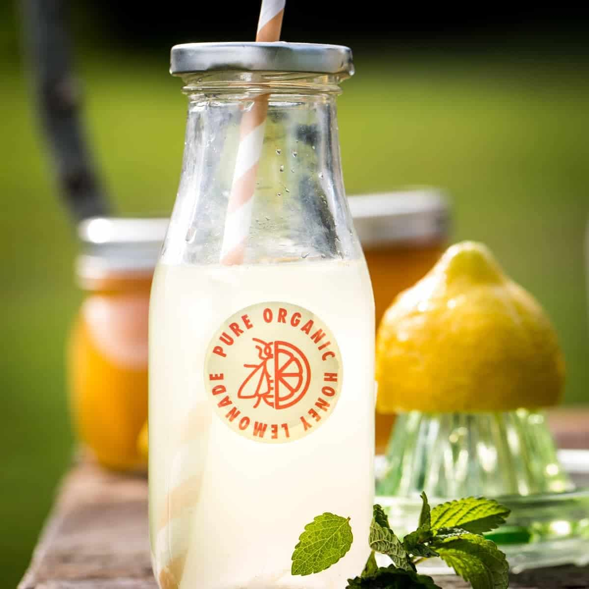Lifestyle Bee Farm - Honey Mint Peach Lemonade Recipe - Kids Lemonade Stand - Jena Carlin Photography - Little Rusted Ladle - Web-43