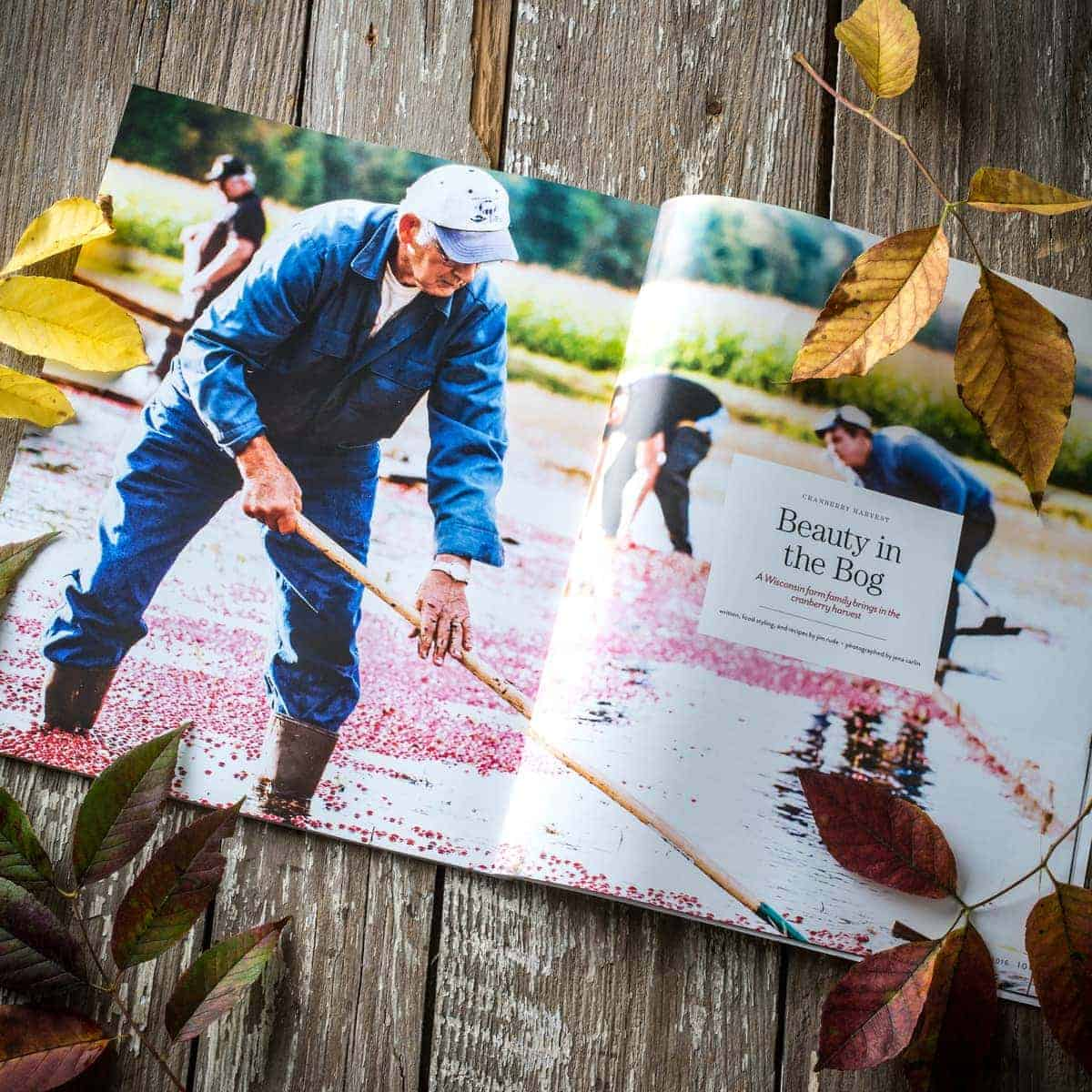 sift-fall-2016-feature-2-cranberry-harvest-little-rusted-ladle-jena-carlin-photography-web