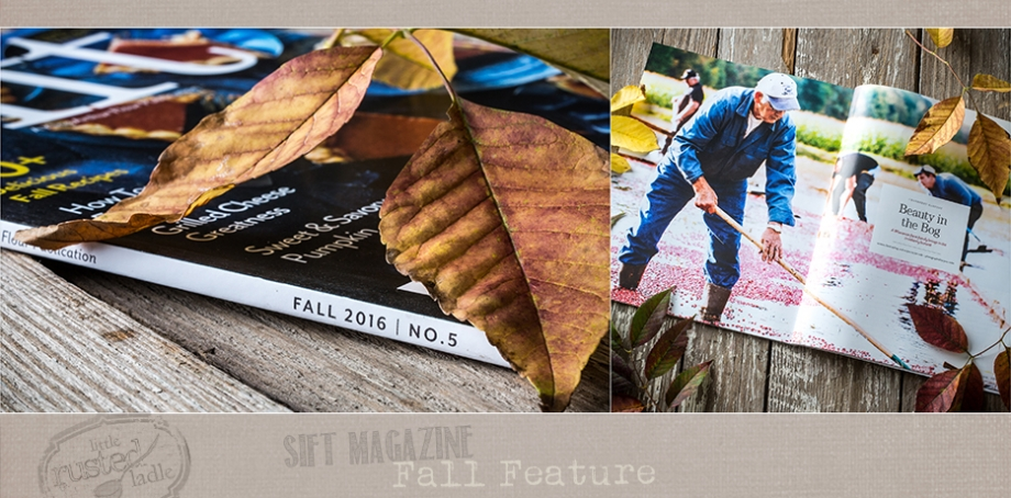 sift-magazine-fall-feature-cranberry-harvest-little-rusted-ladle-food-photography-webfb