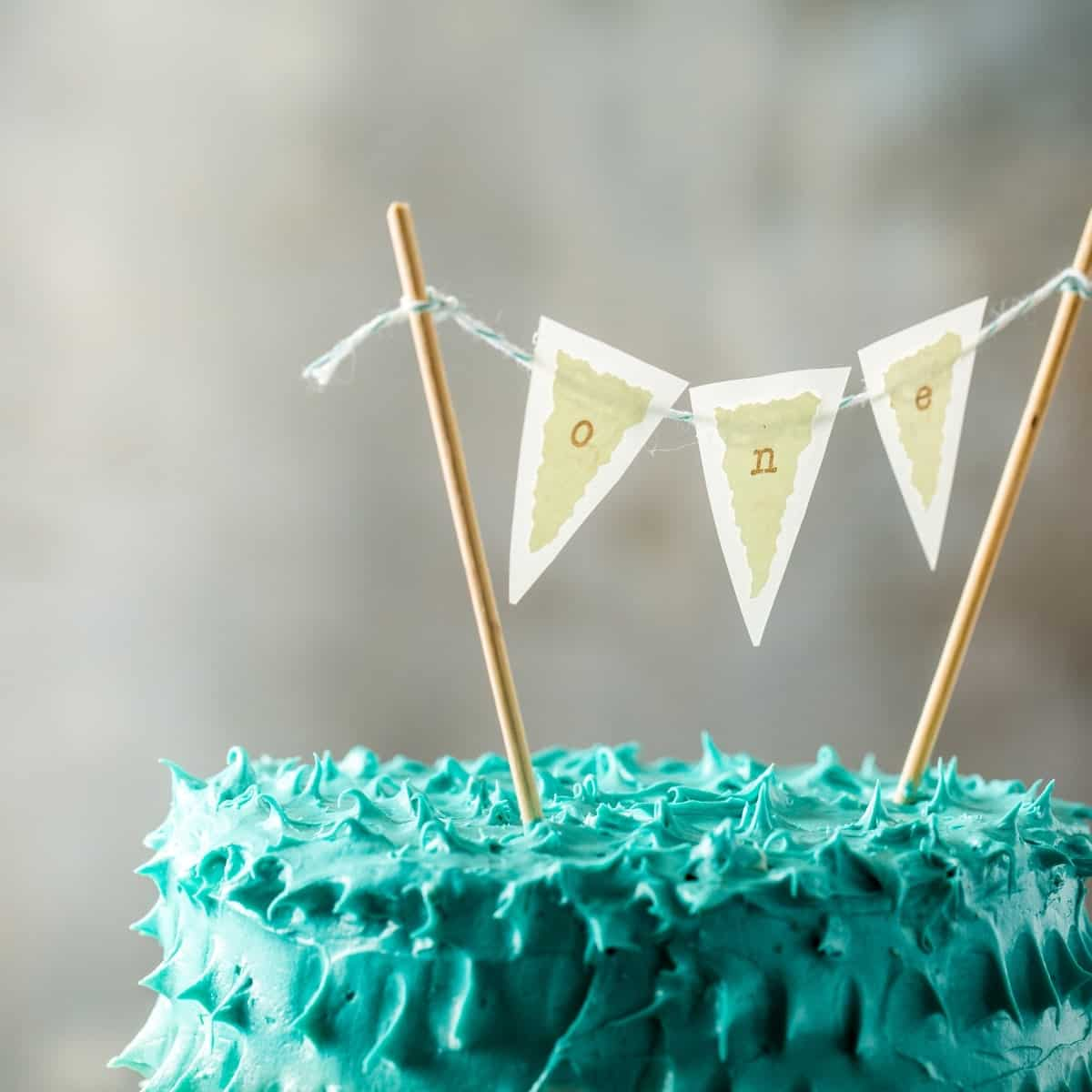 Vintage Circus Theme First Birthday Party Healthier Smash Cake - Jena Carlin Photography - Web-10