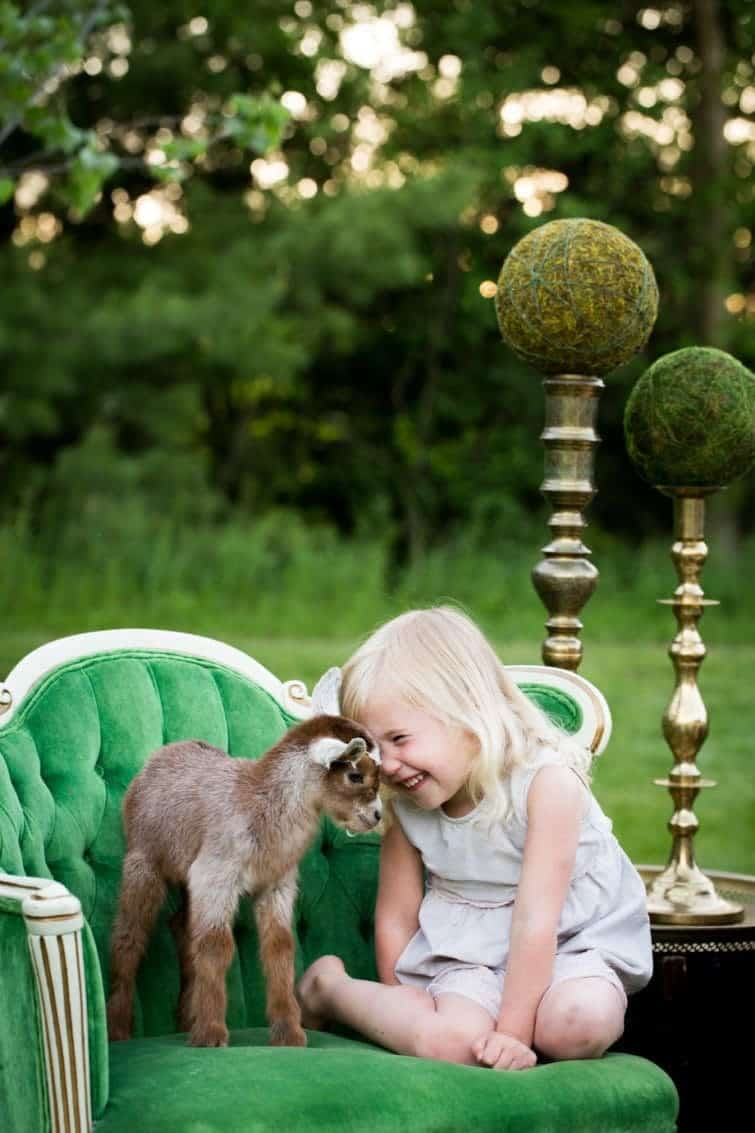 Wedding shower with little girl and baby goat