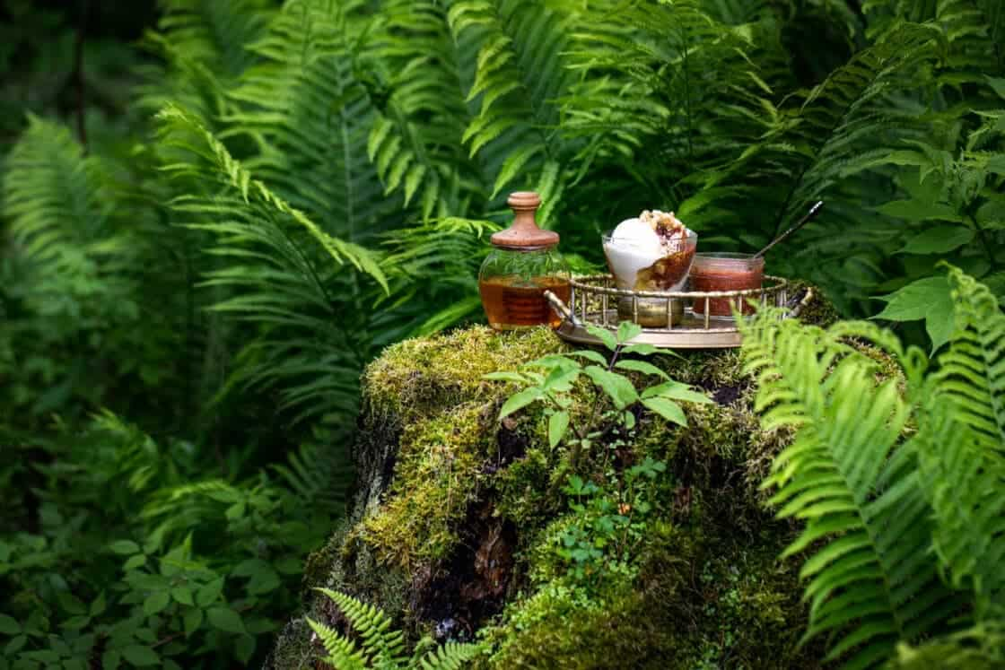 Strawberry Rhubarb Frozen Yogurt Sundae on an antique tray with jar of jam and pot of honey on a mossy stump.