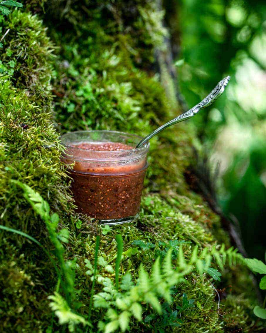 glass jar of strawberry rhubarb jam on a mossy stump highlighting a spring recipe.