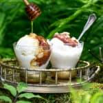 strawberry rhubarb jam on frozen yogurt with verdant bcakground