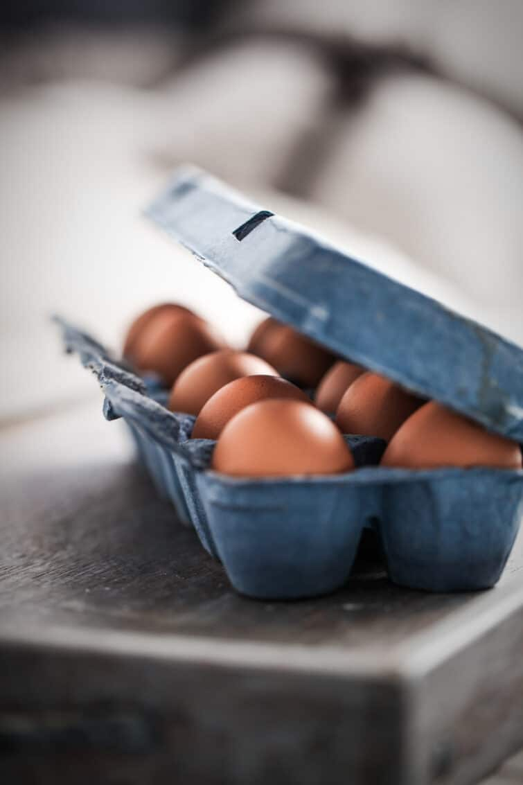 brown eggs in a blue carton