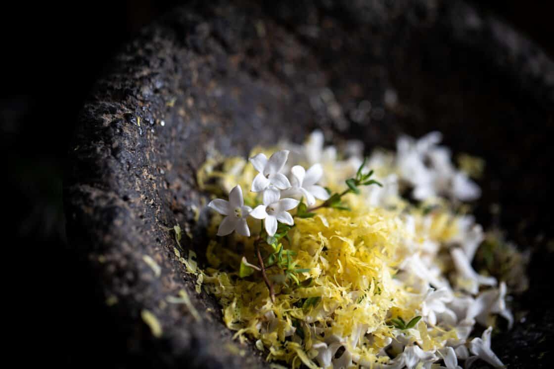 Lilac sugar thyme in a stone mortar