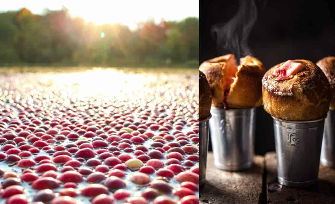 Split photo of dusk on a cranberry bog and cranberry popovers
