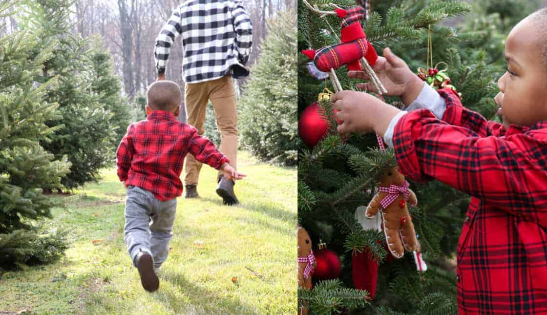 Dad and son in plaid shirts running through Christmas tree farm and little boy putting ornaments on a tree