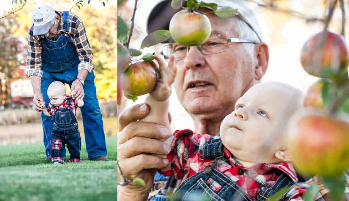 Grandpa and grandson experiencing the apple orchard